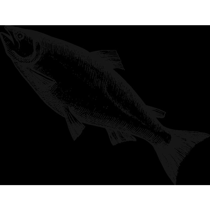 Sea fish